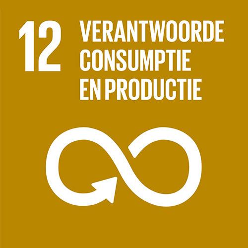 Verantwoorde consumptie en productie